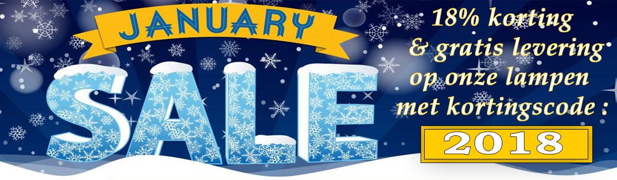 The January Sale